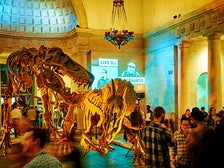 First Fridays at Natural History Museum of Los Angeles