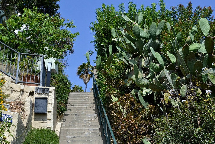Broadview Terrace Stairs
